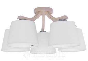 Потолочная люстра MIKA 5-WH TK-Lighting 2291